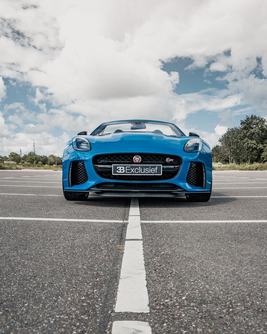 Jaguar 18.jpg
