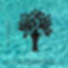 LogoMTFA.png