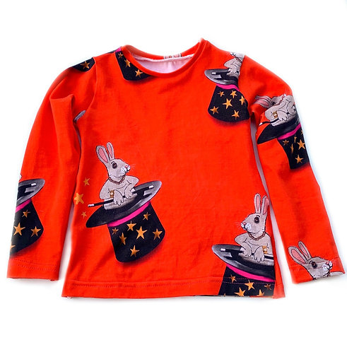 Rabbit magician top