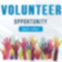 volunteer3_n.jpg
