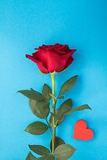 closeup-red-rose-heart.jpg
