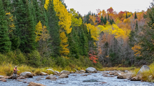 Trout Unlimited Cold Water Conservancy