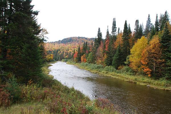 upper CT river.jpg