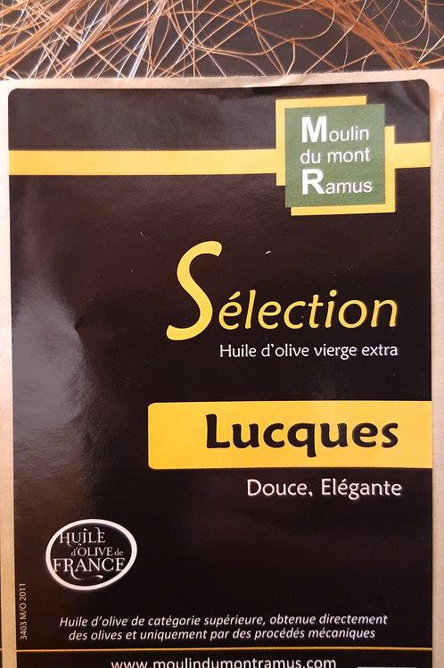 Sélection Lucques