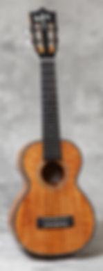 HF-2DI.jpg