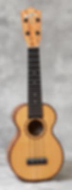 HF-1DC.jpg
