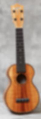 HF-1D.jpg