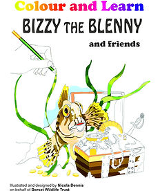 bizzy colour and learn front cover..jpg