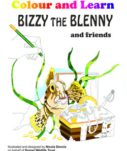 bizzy colour and learn front cover.