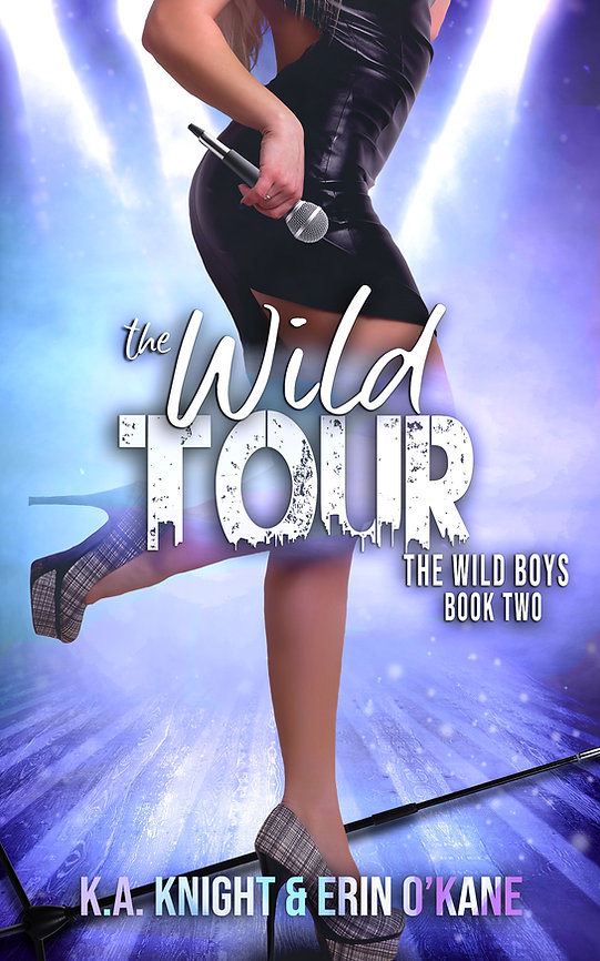 The Wild Tour Ebook.jpg