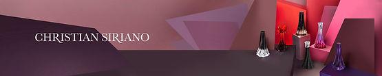 CS- banner.jpg