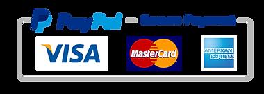 paypal-logo-e1569511829817.png