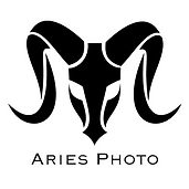 Aries white outline.png