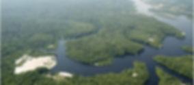 Foto aérea da praia em Anavilhanas