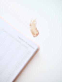 diary_pen1.jpg