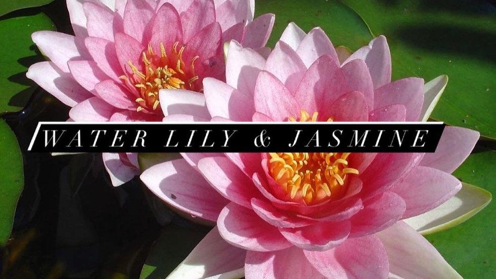 Water Lily & Jasmine