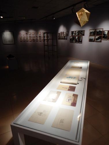 Installation Shot -Icosahedron - Vitrine 11 studies