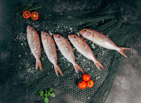 INTRODUCING BAQAALA FISH STORE - Online Fish Store in Doha, Qatar