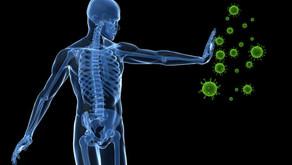 מיינדפולנס ומערכת החיסון