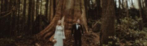David Latour, photographe, mariage, france, vancouve, cérémonie, elopement,couple