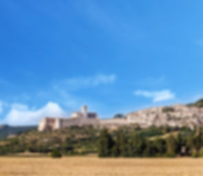 Umbriaction | from Assisi to Cortona