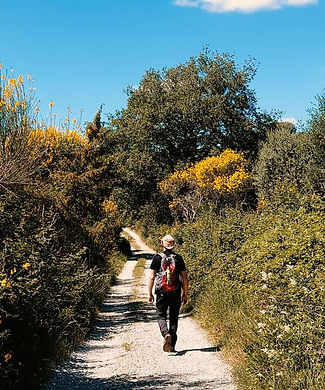 Umbriaction trekking in Umbria