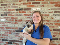 Veterinary Assistant holding cat