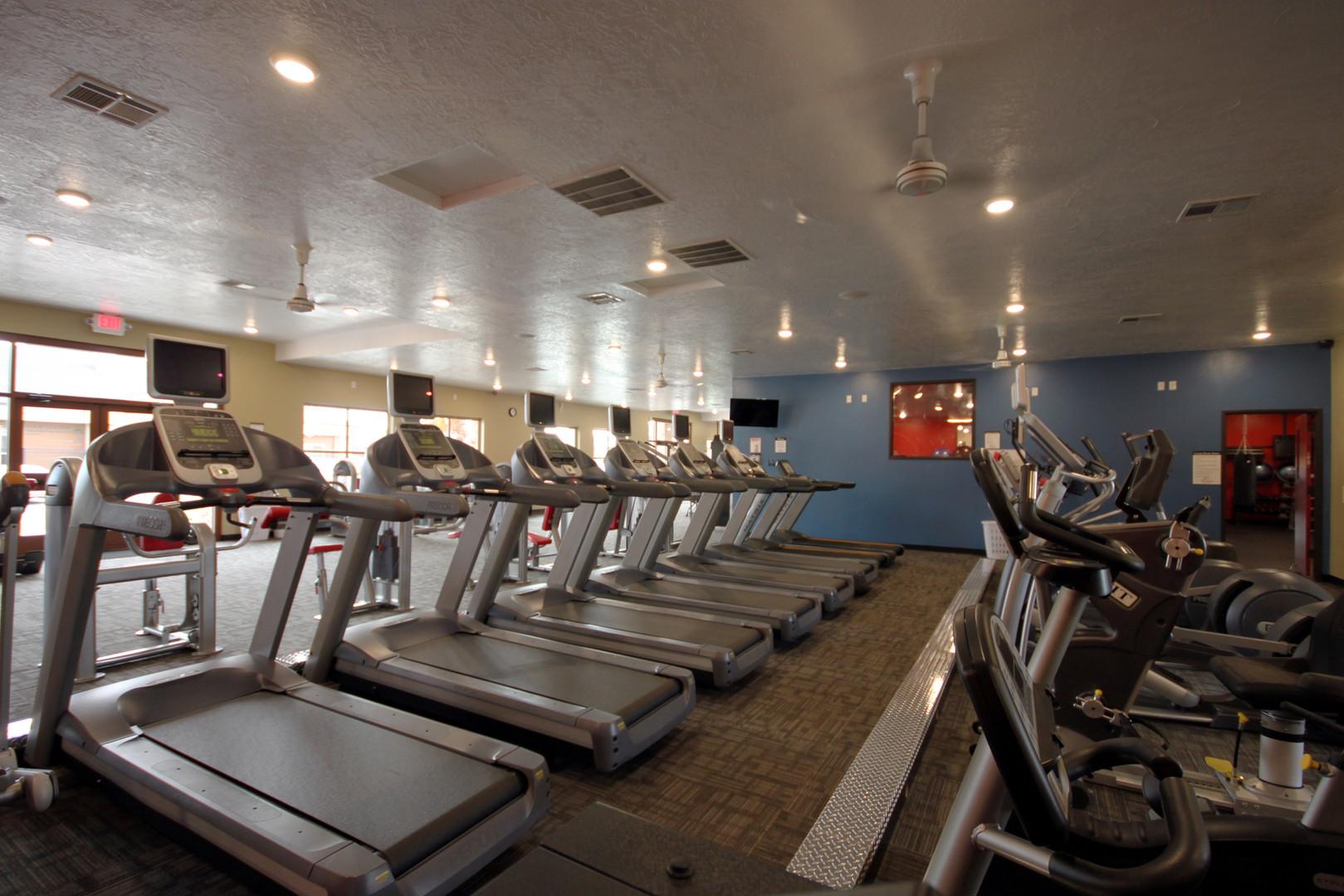 Everest - Treadmills.jpg