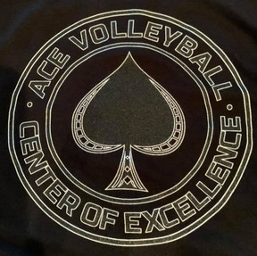 Ace Center Of Excellence