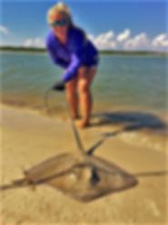 redfish tarpon surfing lessons paddleboard cape san blas shark charters