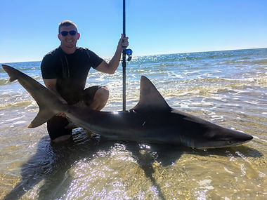 shark fishing indian pass cape san blas