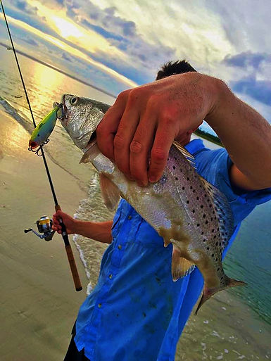 surfing lessons trout tarpon redfish shark charters