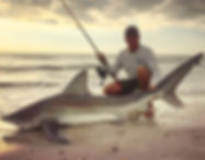 fishing shark surf paddle board lessons