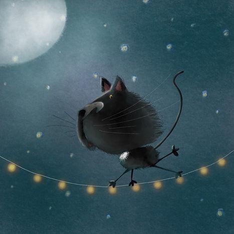 black cat on wire.jpg