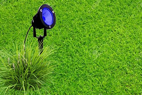 5 Watt LED Spike Garden Light for Outdoor Purposes (Blue)
