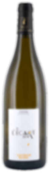 Packshot-Legrand-A-L'Ecart.png