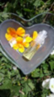 pretty-little-kitchen-spray-anti-moustiques-huiles-essentielles-citronnelle-lavande-abricot-geranium-eucalyptus