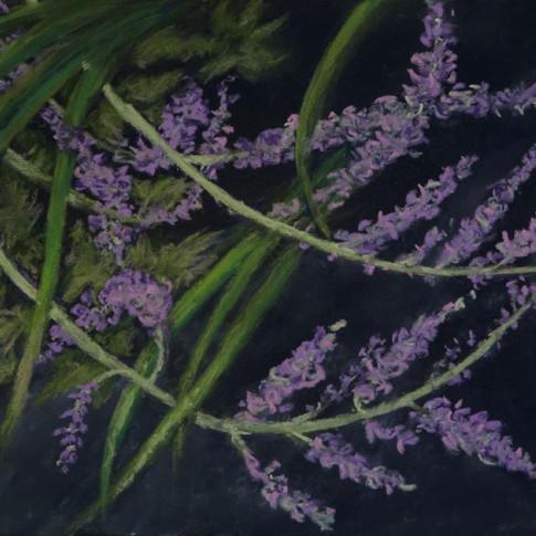 Lavender intertwines with Iris