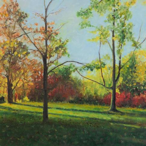 Under the Autumn Sun