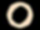 logo st parel 2.png