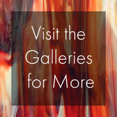Visit the Galleries for More