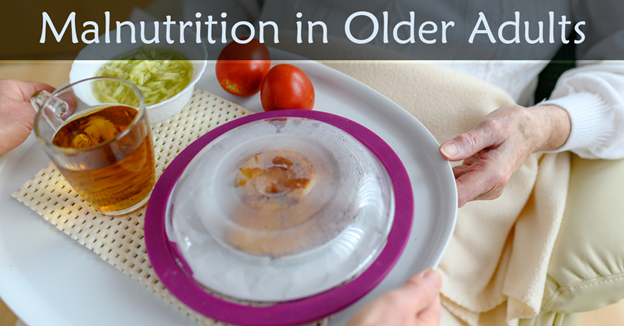 """A nursing patient receiving a plate of food with text """"Malnutrition in Older Adults"""""""