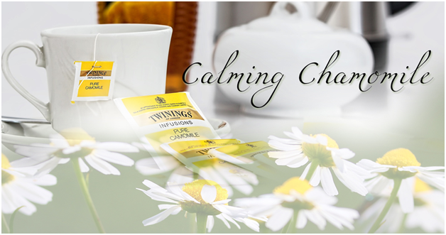 Chamomile tea for anxiety. Cup of tea with chamomile flowers.