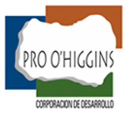 Pro O'Higgins