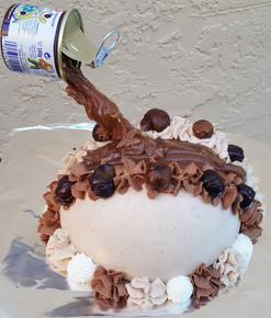 Gravity cake : 10/12 persons: starts $79 (chocolate& MM's), starting $82 chestnut