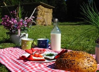 Piknik v Obřím dole