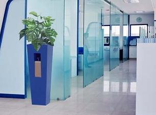 Clean Station - Marie -Blue.jpg