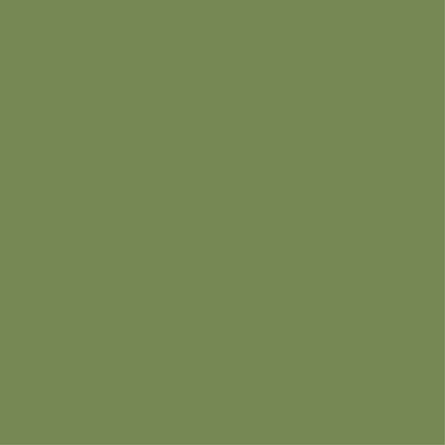 (AC 3441) FERN GREEN