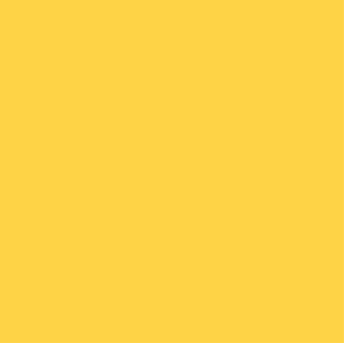 (SW 3060) CANARY YELLOW