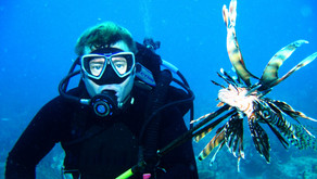 Lionfish Challenge 2020
